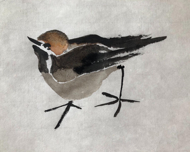 vogel - 2