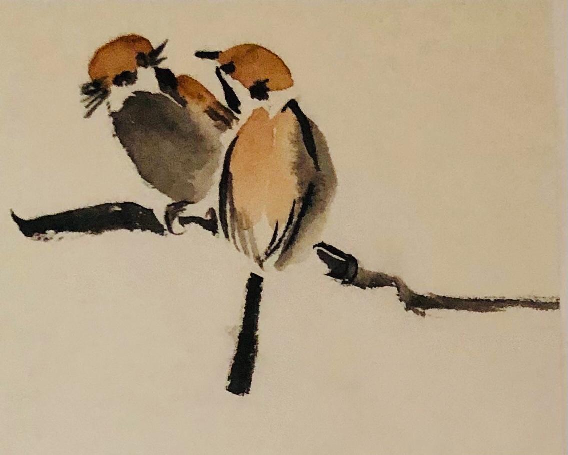 vogels - 2