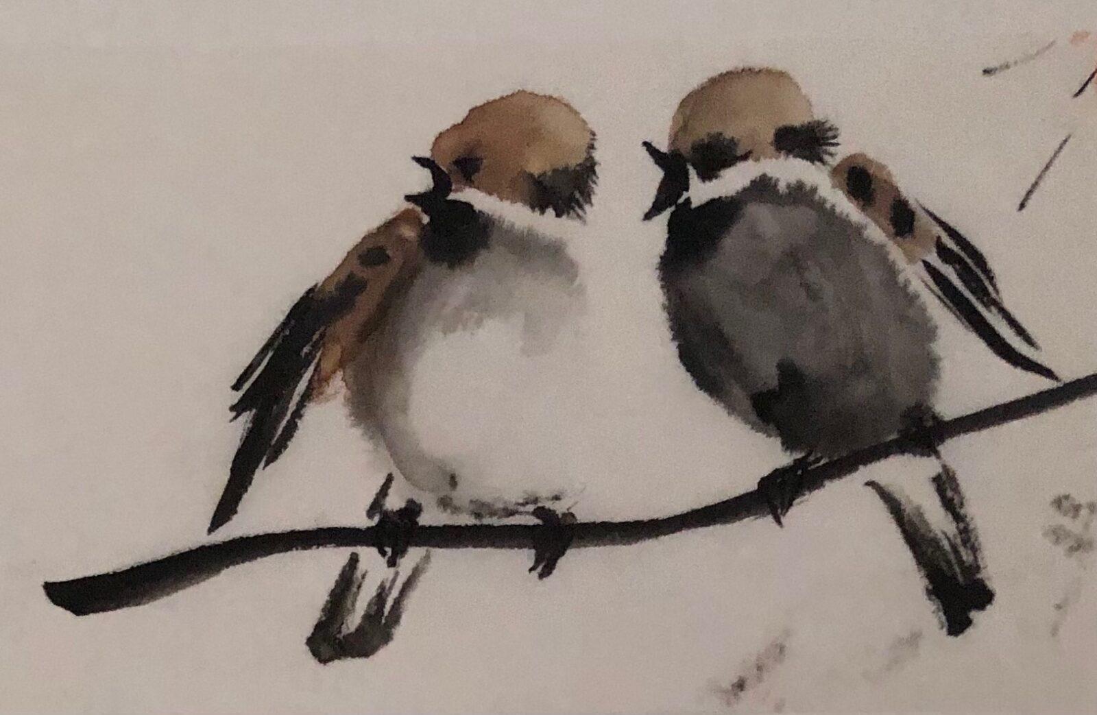 Vogels - 1